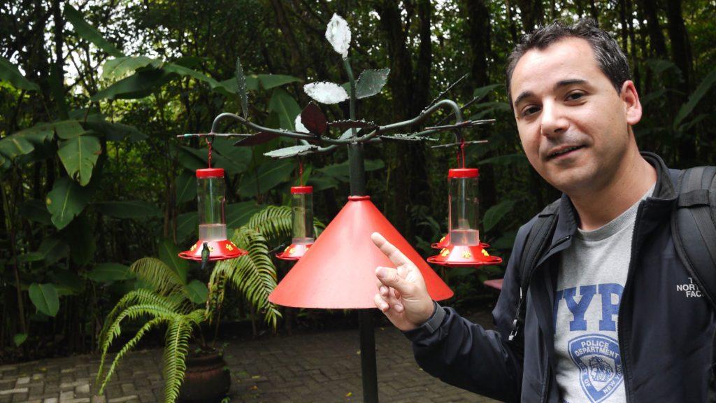 Qué ver y qué hacer en Monteverde. De ruta por Costa Rica