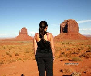 costa oeste, monument valley , usa