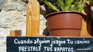 Camino de Santiago con Organizotuviaje.com