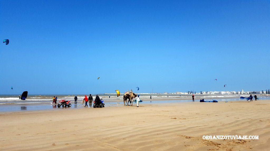 Ruta en coche por la costa de Marruecos | Marrakech, Essaouira y Agadir