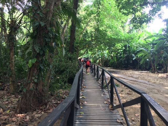 excursión al parque nacional tayrona