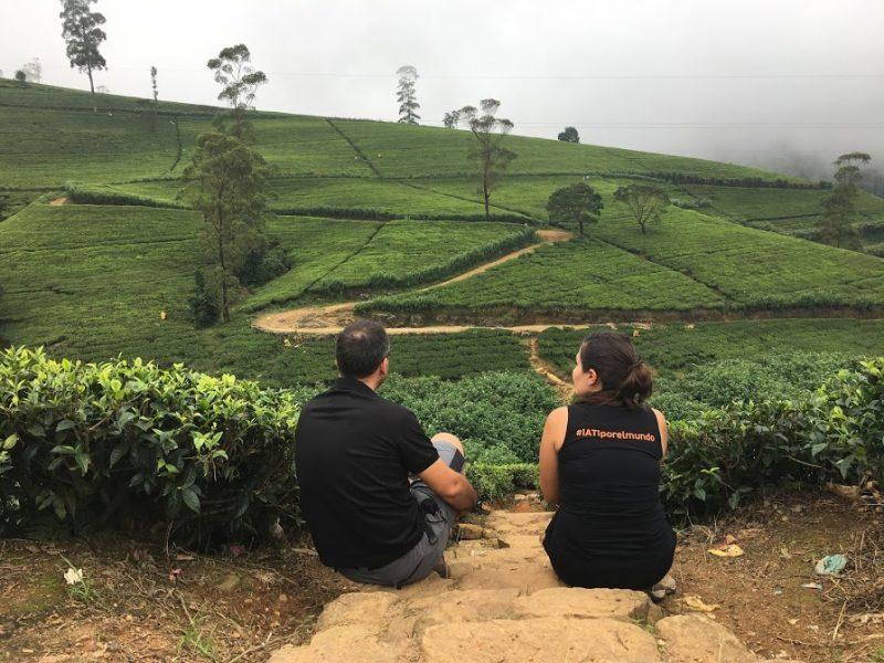 Nuwara Eliya y las plantaciones de té en Sri Lanka