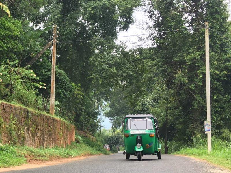 Ruta por Sri Lanka de 7 y 8 días: ¿Qué ver y qué hacer? Precios y mapas