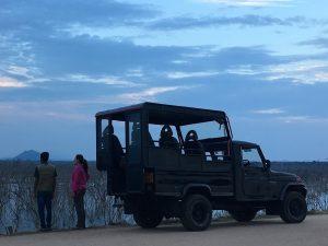 Safari en Yala