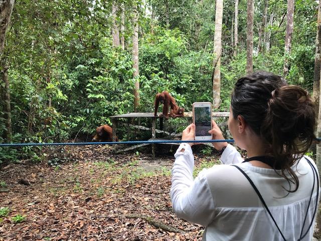 Tour por Borneo en klotok