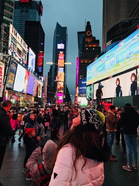 Nueva York en 6 o 7 días
