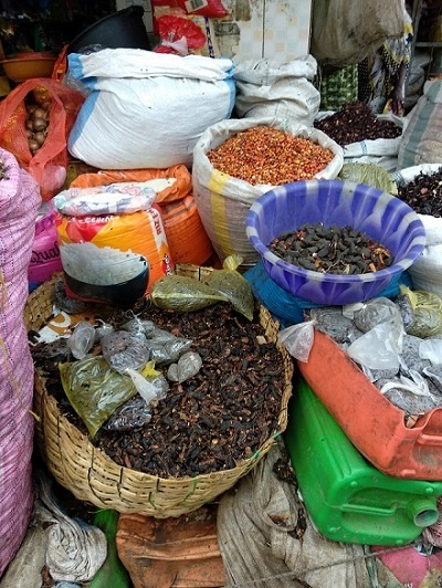 Viajar a Senegal con una agencia local durante 14 días 📸