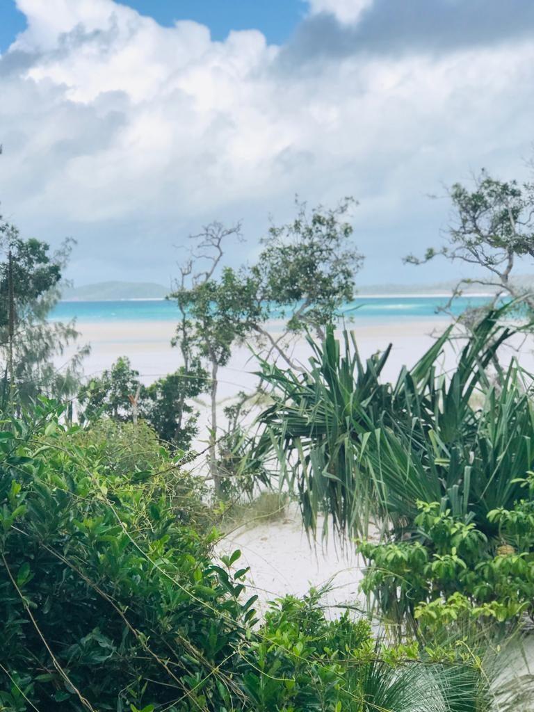 WHITEHAVEN: Playas de Australia [ Consejos y cómo ir ] 🧡