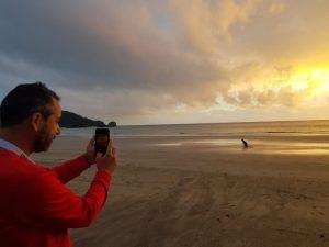 Playa donde ver canguros en libertad en Australia (2)