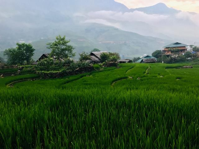 ruta 15 dias por Vietnam by organizotuviaje.com Lugares e ideas. Sapa