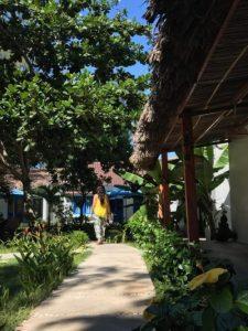 Ruta de 15 dias por Vietnam by organizotuviaje.com Lugares e ideas