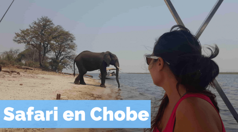 Safari en Chobe by organizotuviaje.com