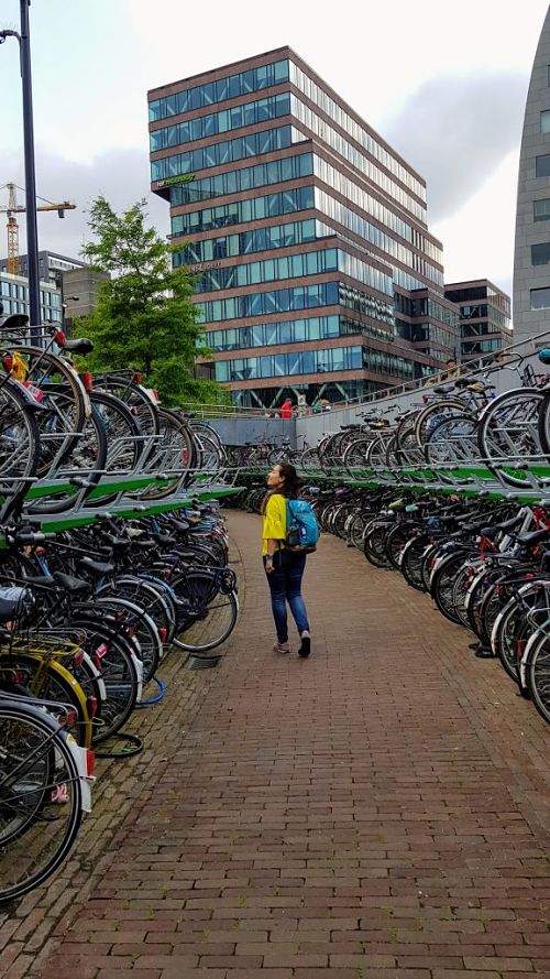 Consejos para viajar a Rotterdam