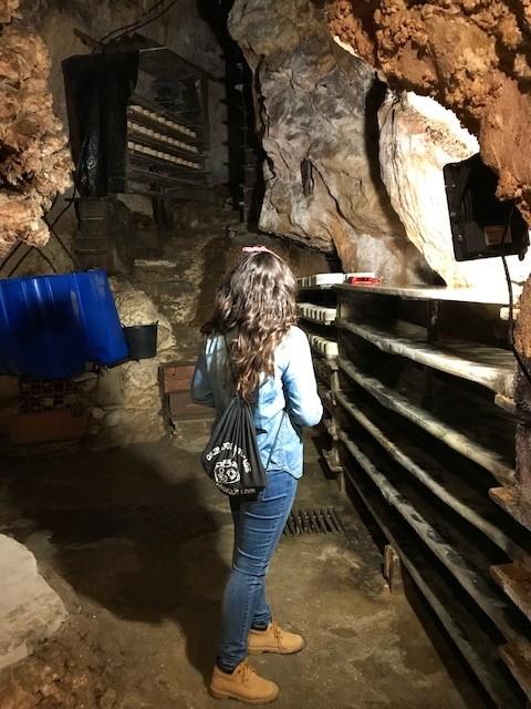 Dónde visitar una cueva del queso de Cabrales en Asturias 🥇