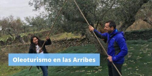 OLEOTURISMO EN LAS ARRIBES
