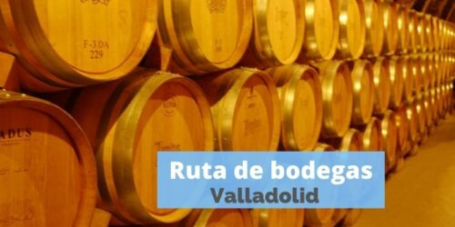 RUTA BODEGAS RIBERA DEL DUERO Y RUEDA