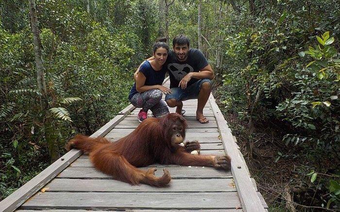 Tour klotok en Borneo